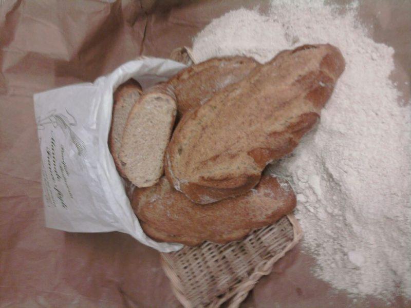 Pane antico