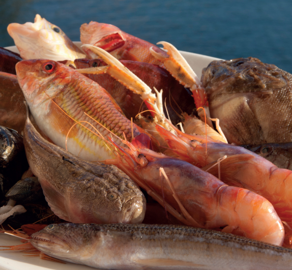 Calendario del pesce di stagione nei mari italiani