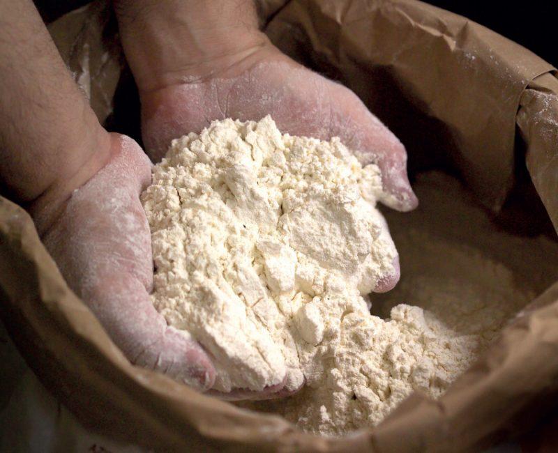 Professionisti: Lievito madre, farine magiche e pane di qualità