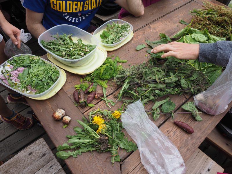 Cucina antispreco e valorizzazione delle verdure per le scuole